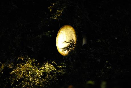 """""""Mondlicht"""" - Randpräzise, streulichtfreie Lichtprojektion auf die Goldscheibe und Reflexionen in das Blattwerk."""